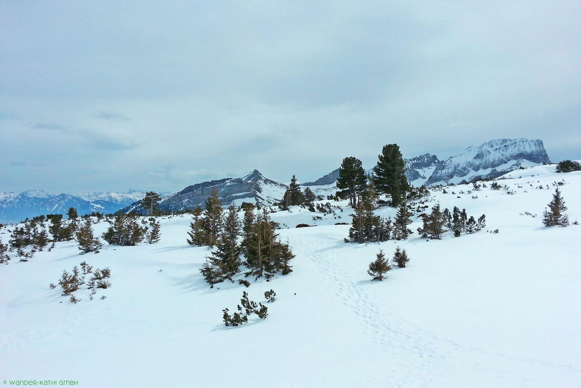 liechtenstein-schneeschuhtouren-wildhaus-wander-kathi-002