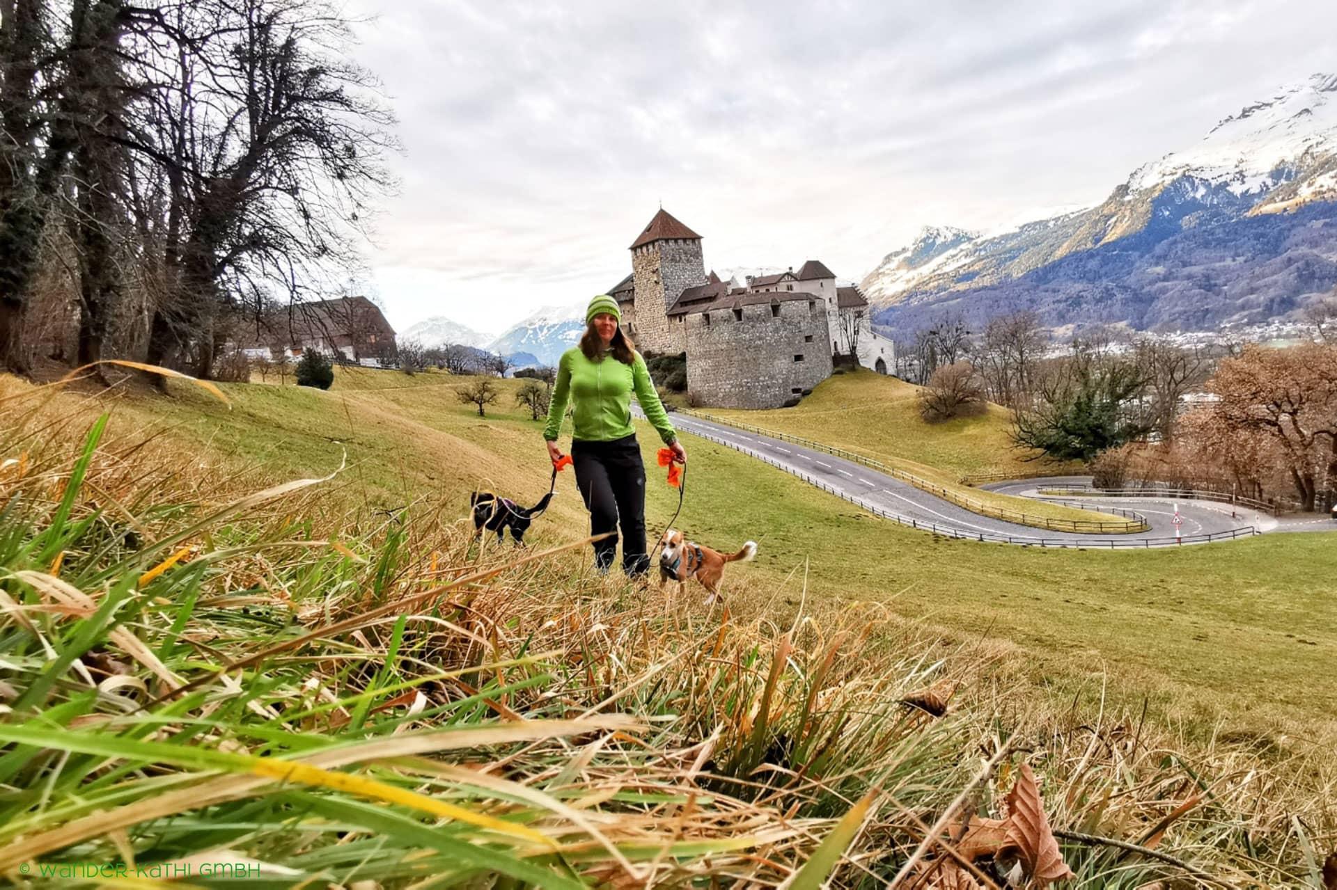schluchtenweg-sevelen-hund-wanderung-schweiz-wander-kathi-002