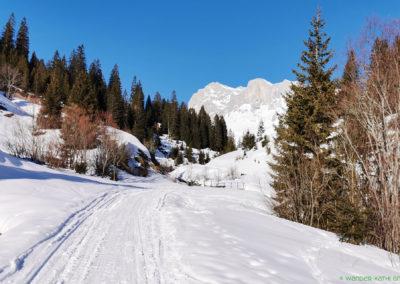 liechtenstein-schneeschuhtouren-prättigau-wander-kathi-002
