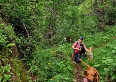 schluchtenweg-sevelen-hund-wanderung-schweiz-wander-kathi-003