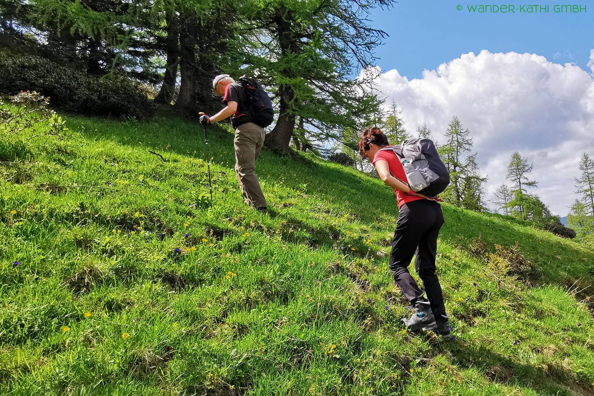 wanderung-bärenlöcher-liechtenstein-halbtagestour-wander-kathi_005