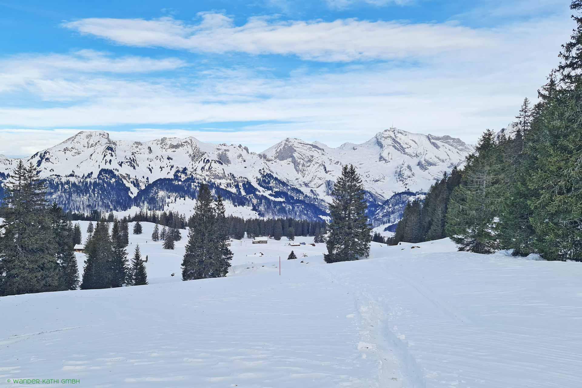 liechtenstein-schneeschuhtouren-schönenbodensee-wander-kathi-001