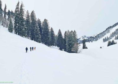 liechtenstein-schneeschuhtouren-wildhaus-gräppelensee-wander-kathi-002