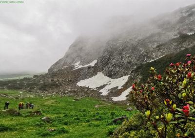 wanderung-kräuterwanderung-liechtenstein-kräuter-wander-kathi_008
